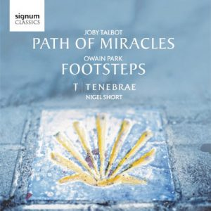 Path-of-Miracles-Footsteps